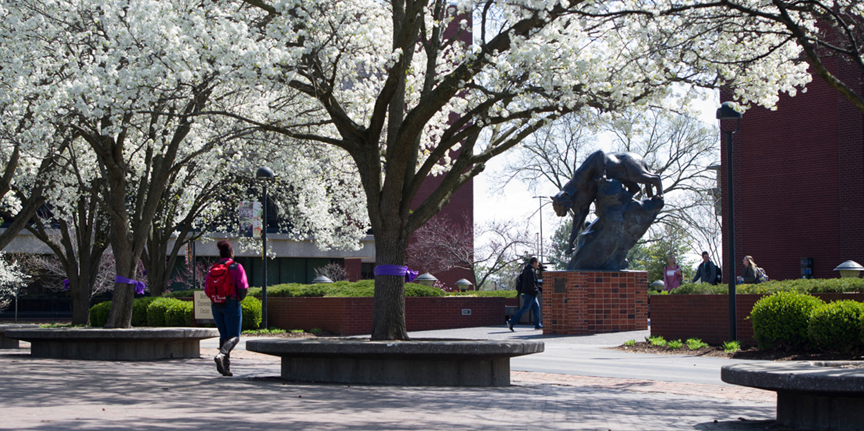 Student walking in front of the Morris University Center during spring while the trees are blooming.