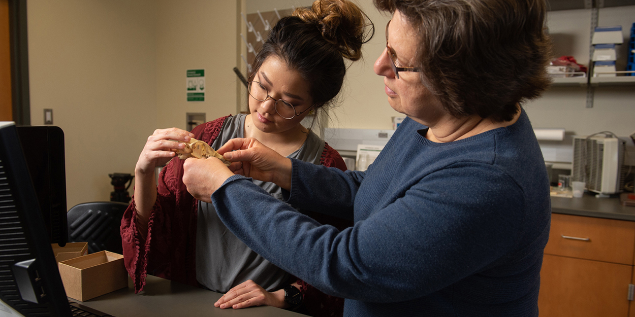 Two women treating an animal in a lab.
