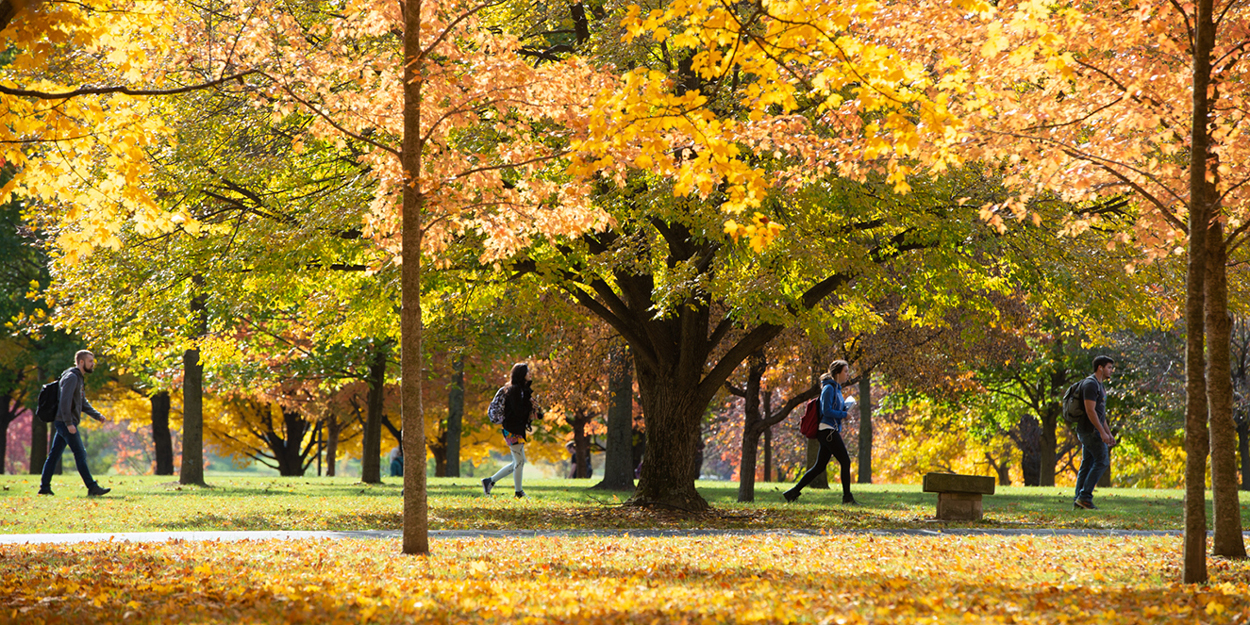 SIUE students walk on campus during the fall.
