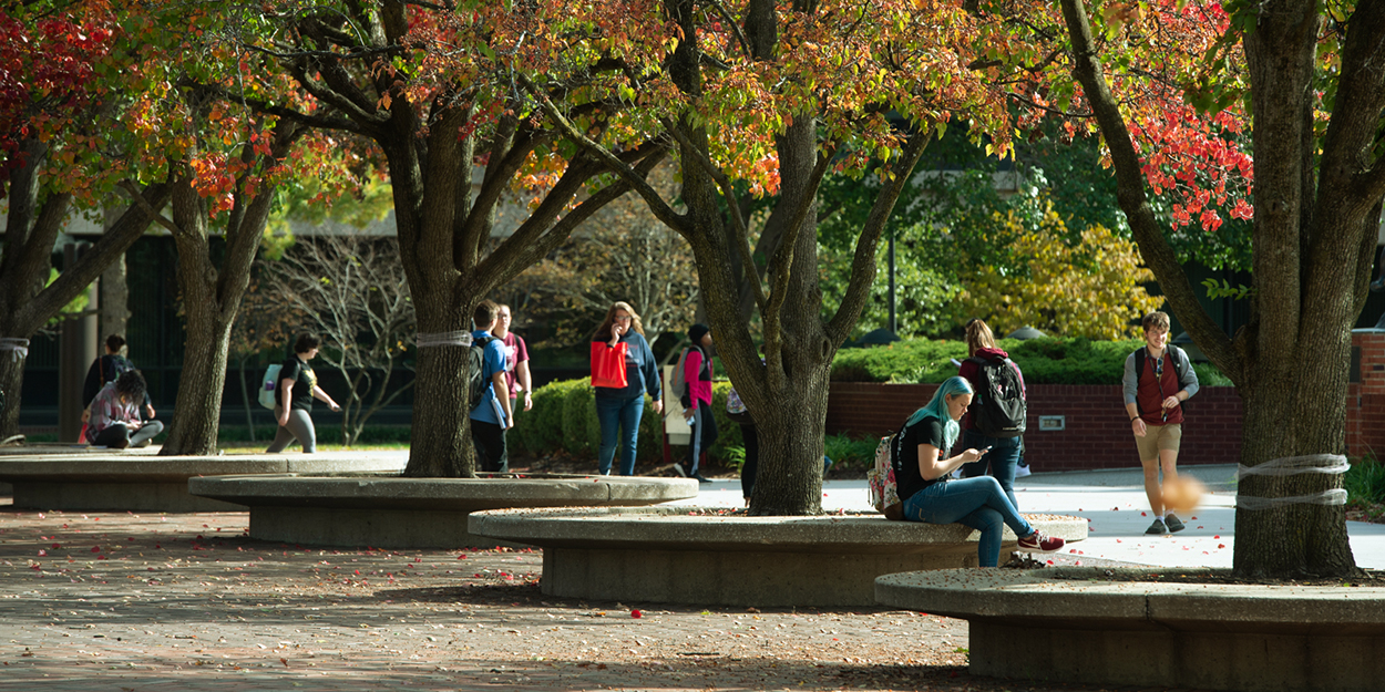 Students walking on the SIUE campus during a sunny day.