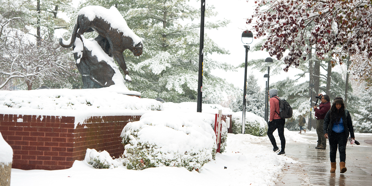 Students walking on a snowy SIUE campus near the Cougar Statue.
