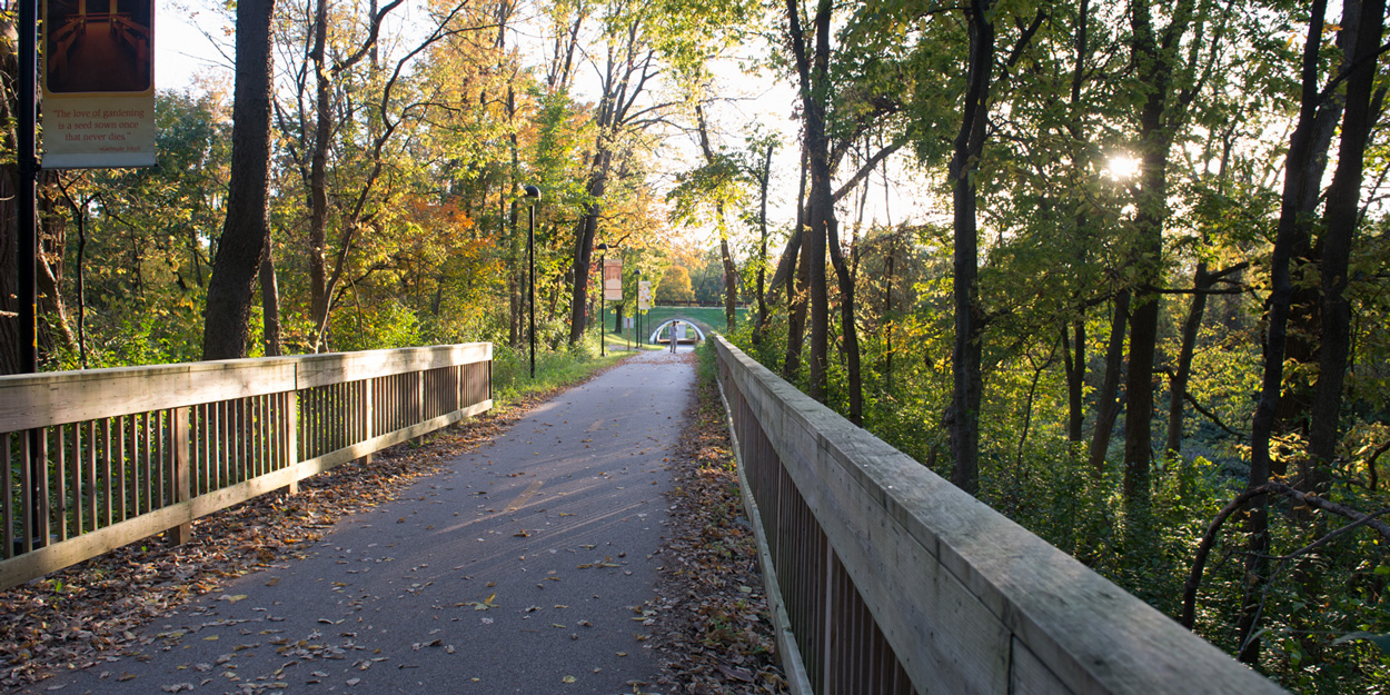 Bike path at SIUE during dusk that is north of Alumni Hall and east of Birger Hall.
