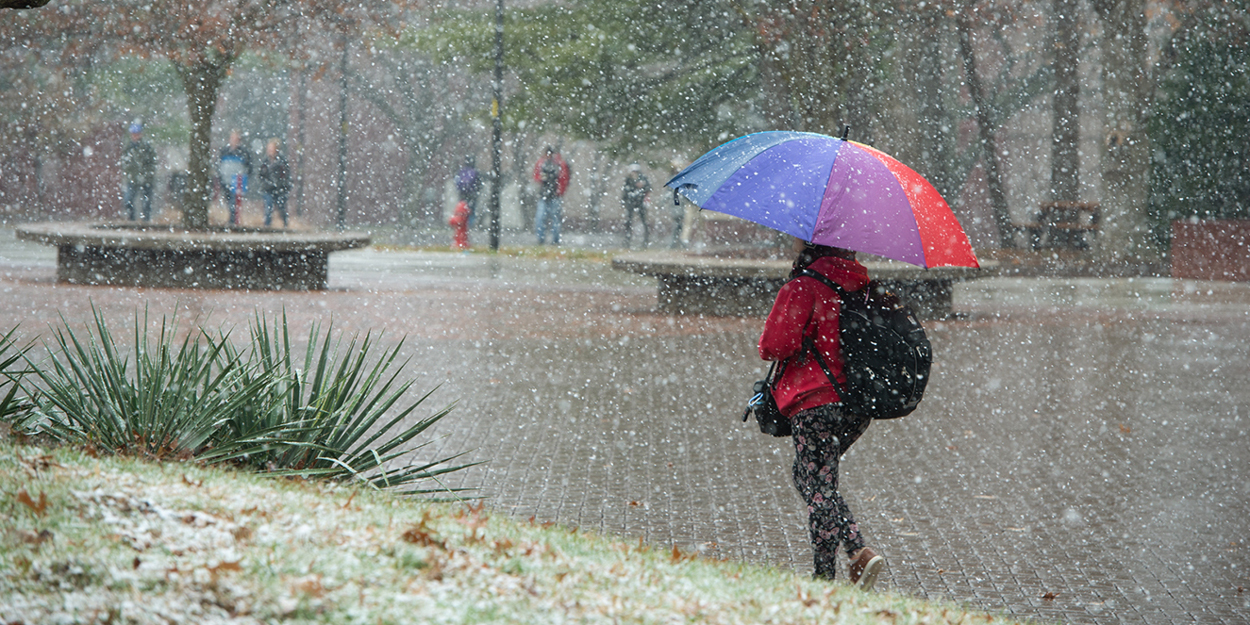 Snow falling on the Stratton Quadrangle on the SIUE Campus.