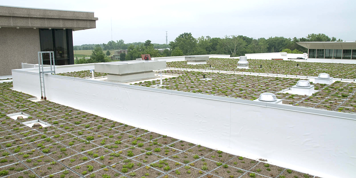 Green Roof on top of the Student Success Center