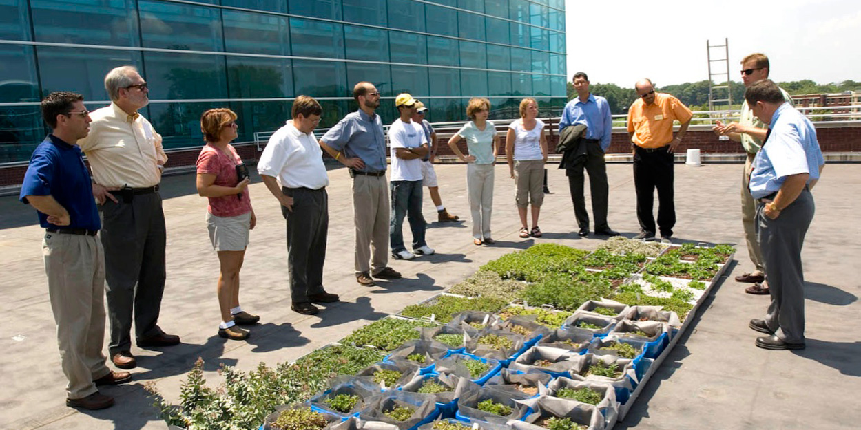 People look at a green roof on the engineering building at SIUE.
