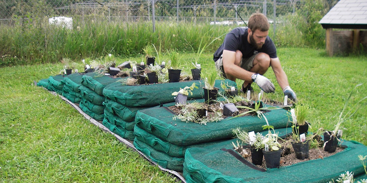 Student growing plants at SIUE.