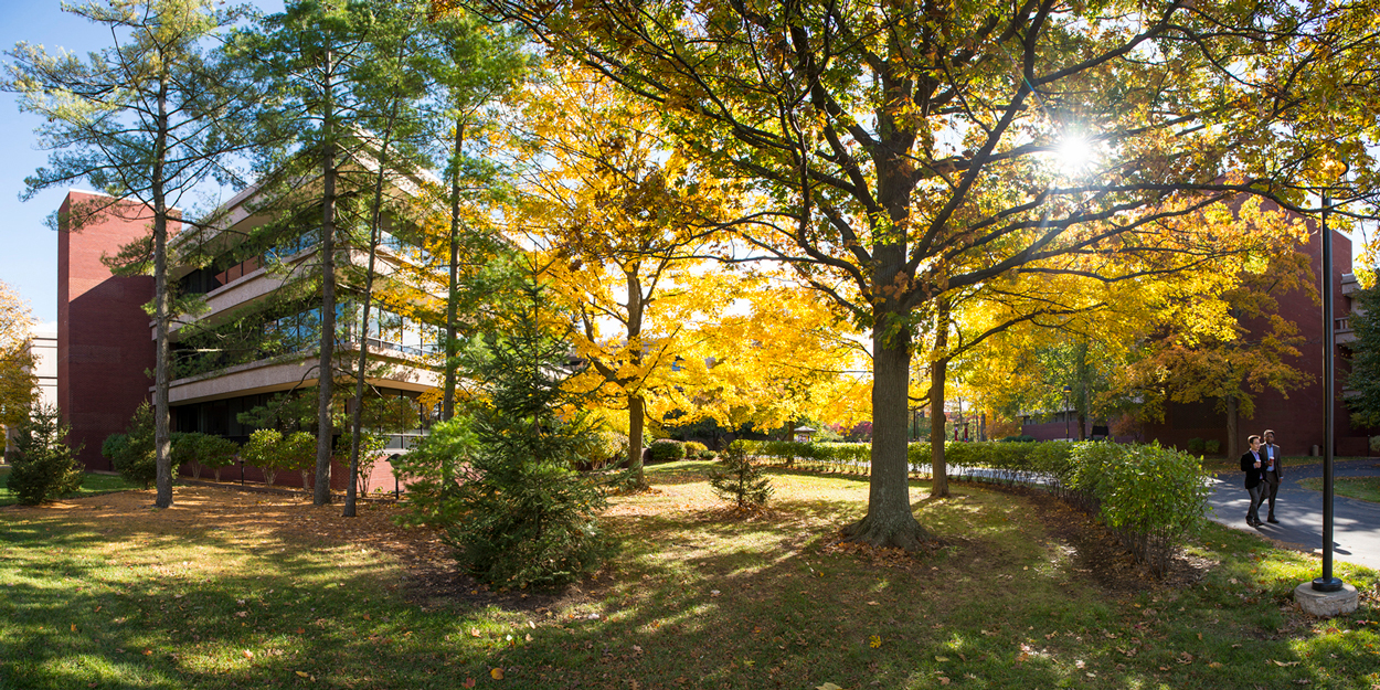 Walkway between Peck Hall and Lovejoy Library during a late afternoon day in the fall.