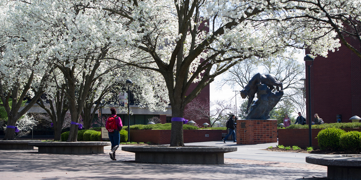 The SIUE Cougar statue on a spring day in front of the Morris University Center.