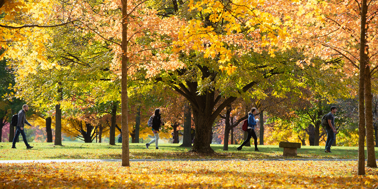 Fall students walking during a fall day at SIUE.