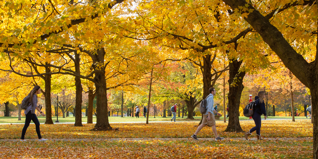 Students at SIUE walking on the campus during a fall day with yellow leaves falling.