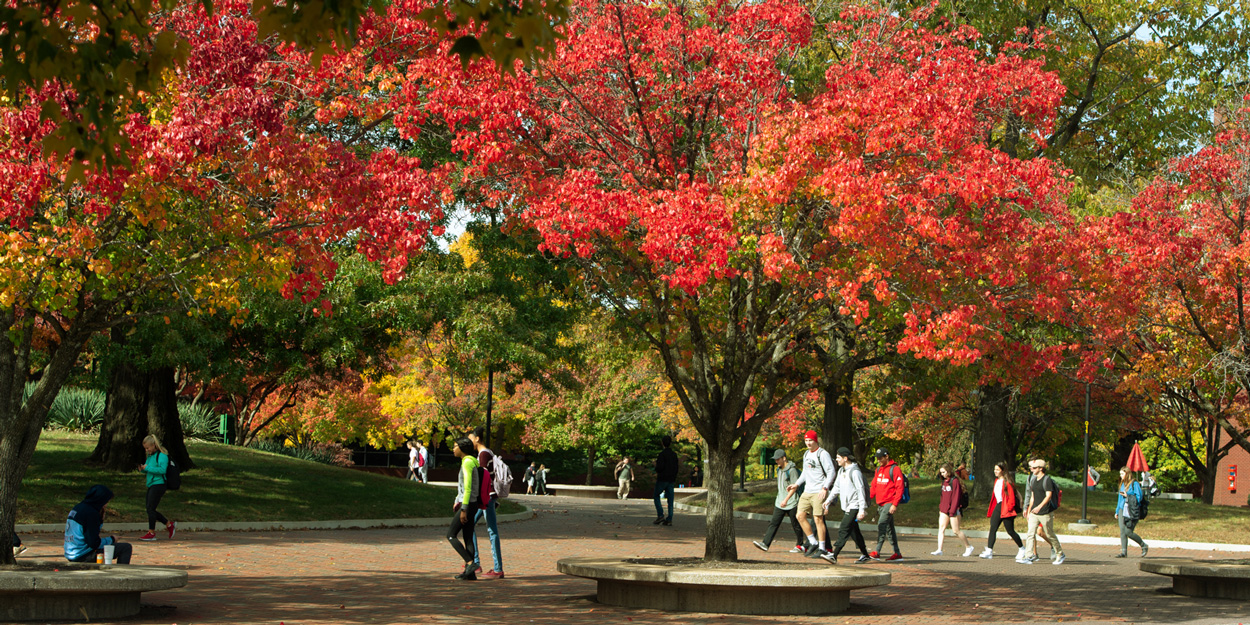Students at SIUE walking on the Stratton Quadrangle during a fall at mid-day.
