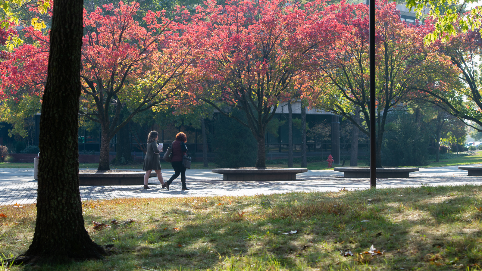 Two women walking on the SIUE Campus