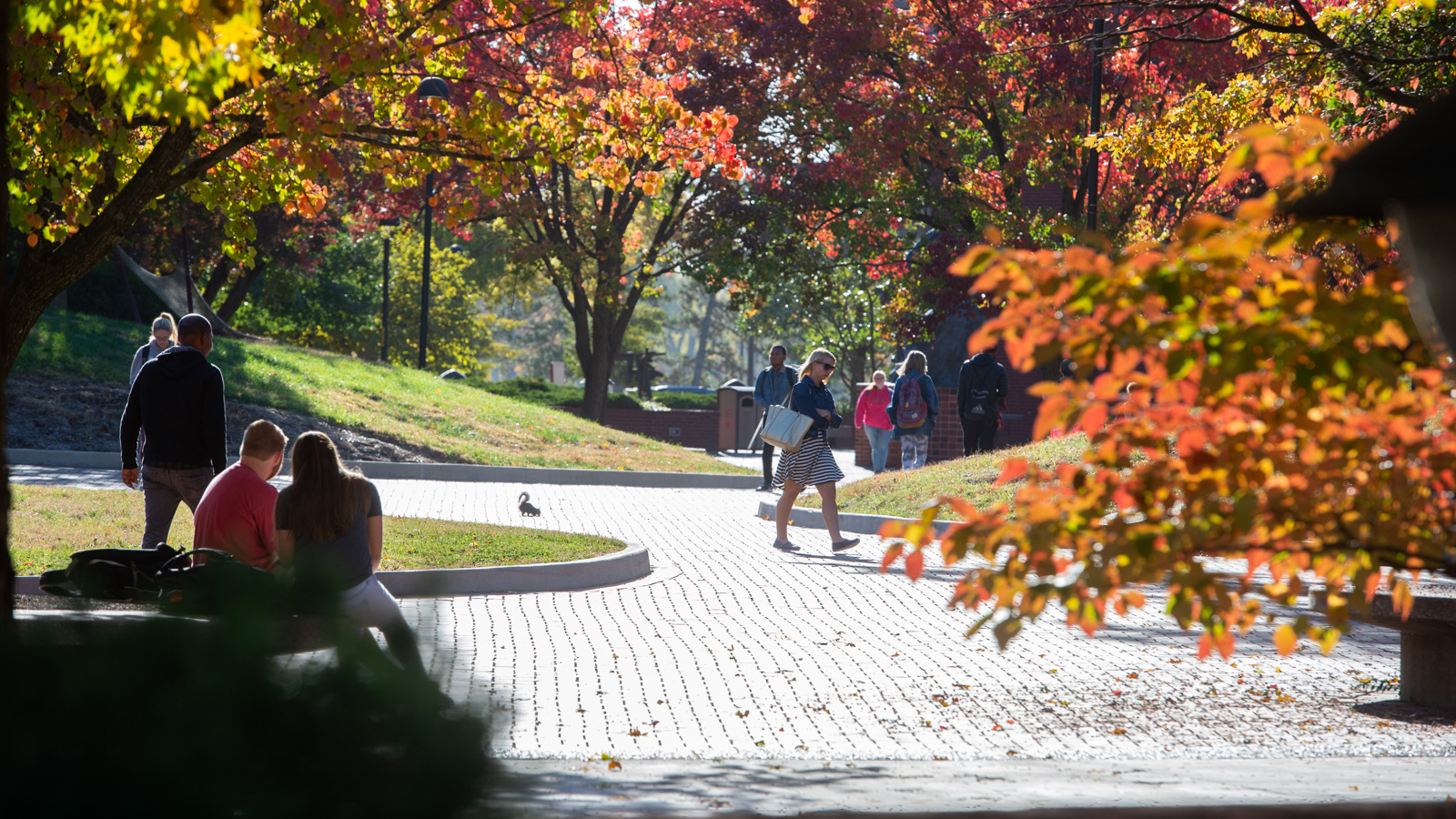 SIUE student walking on the Stratton Quadrangle.