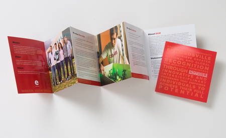 Mission, Vision, and Values Brochure