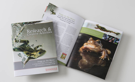 Research and Creative Activities Magazine - Fall 2013