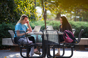 Students study outdoors on SIUE's campus.