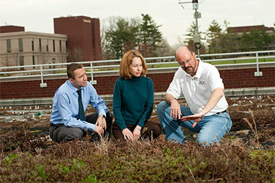 Working on one of SIUE's green roofs are (L-R) Serdar Celik, Susan Morgan and Bill Retzlaff.