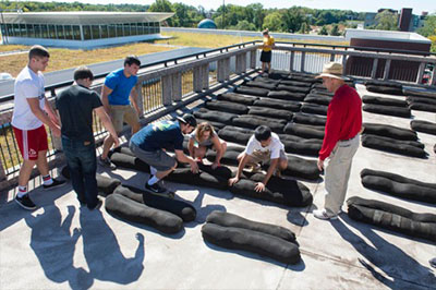 Under the direction of SIUE's Bill Retzlaff (far right), students work on one of SIUE's rooftop gardens.