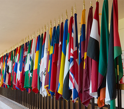 International flags at SIUE.