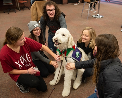 Students gather round Izzy the Goldendoodle in Lovejoy Library. (L-R) Fairen Woolard and Aleah Glodich and Austin Uhls, of West Frankfort; Brooke Snyder, of Alton; and Christa Becherer, of Kaiserslautern, Germany.