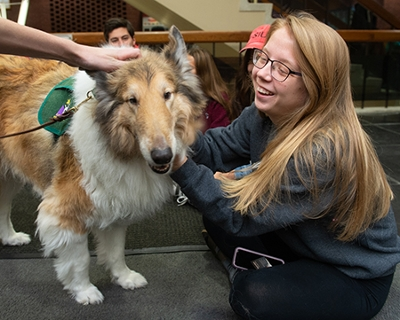 Senior Colleen Mock, of Quincy, smiles happily as she interacts with Socrates, a Rough Collie, with CHAMP Assistance Dogs.