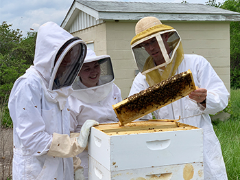 SIUE's Honey Bee Association is growing, with more students joining forces to learn about bees and help care for the honey bee colonies on campus.