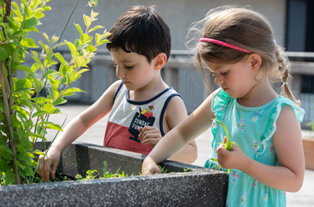 SIUE Early Childhood Center (ECC) students Atlas and Leah weed a flower planting on the rooftop garden outside Fixin's Restaurant on campus.