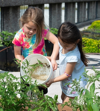 ECC students Maddie and Hazel water tomatoes they helped plant on the rooftop garden at SIUE.