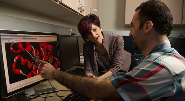 professor and mature student looking at research on a computer