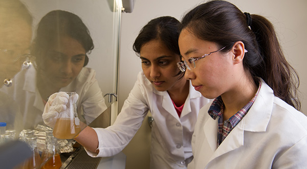 two female students checking flasks under chemical hood