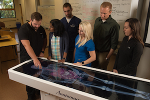 School Enriches Simulated Experiences with Anatomage Table