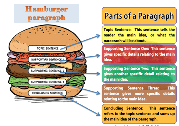 Image result for Paragraph hamburger
